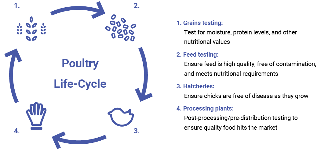 poultry testing services 1